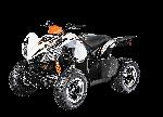 스포츠 XC 450