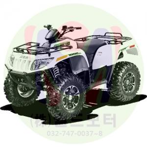 Big Bore 1000 XT, EPS (Green/White)